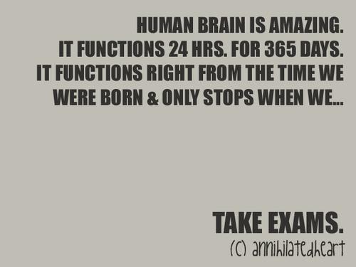 exam,funny,nice,life,quote,head-e1592b4d654bcf3fe39f932ca256575f_h